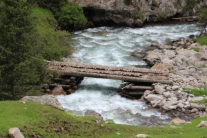 log bridge across the river