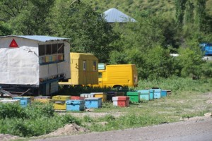 the valley of Bala-Chychkan is full of honey boxes, even trailer mounted, something we have seen earlier in Romania
