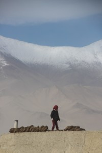 a girl arranging the yak dung cakes on the roof