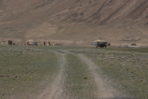 a group of yurts and yaks, ready for the summer