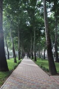 walking way in the middle of Rudaki Avenue