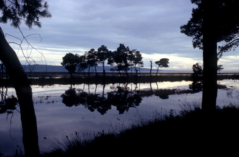 the Karavasta lagoon, separated from the sea in the back