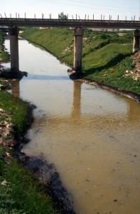 oil pollution in a stream near Fier