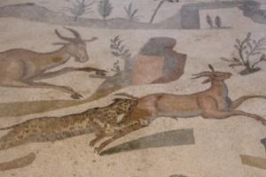 detail of the wild animals