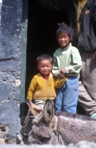 children and a donkey in a Yarlung Valley village