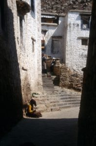 one of the small alleys at the Sera monastery