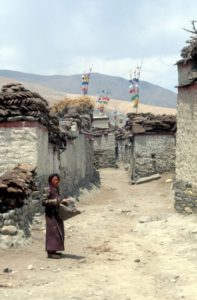 small village on the road to Gyantse