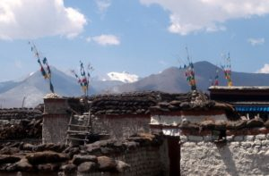dung cakes drying on top of the houses