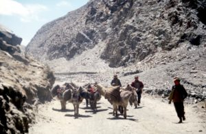 Tibetan transport: the Middle Ages