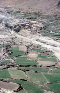 irrgation on the alluvial fans even allows some agriculture