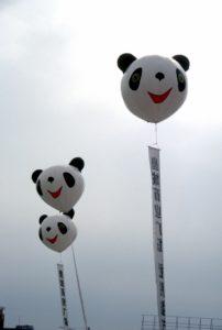 Panda balloons in Chengdu, Sichuan