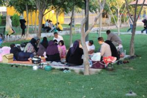 a family gathering in the park