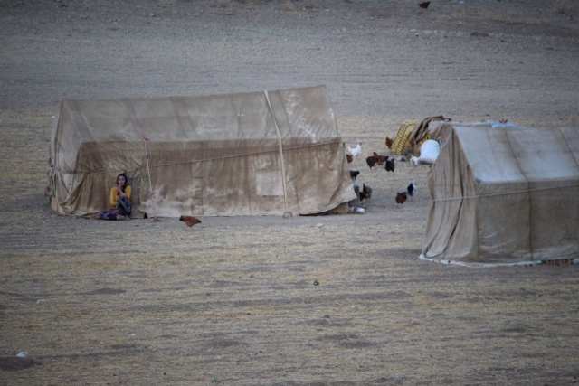 nomads along the road back to Tabriz