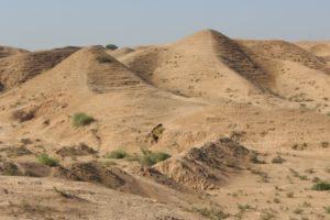 the area surrounding the ziggurat