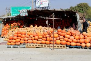 it is also pumpkin season, on the roads out of Hamadan