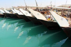 fishing dhows lined up in Al Ruwais harbour
