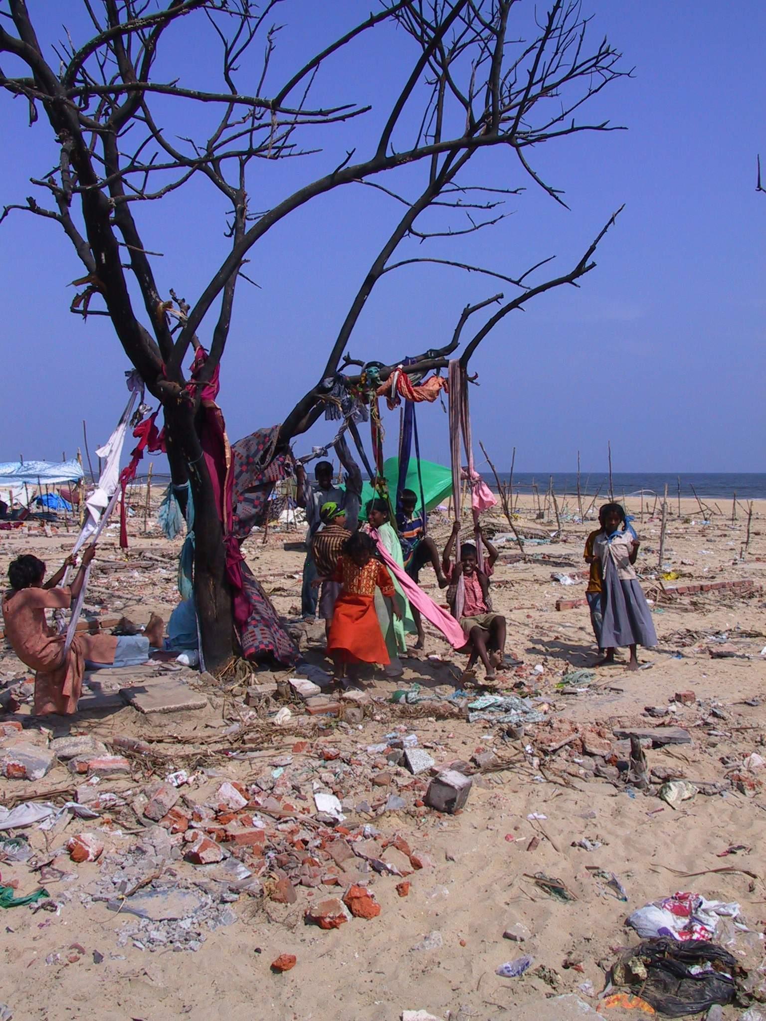 Tamil Nadu after the tsunami