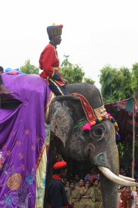 caparisoned elephant in the parade (4)