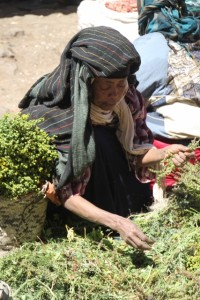 market woman at the Mercato (1)