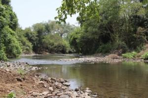 the Mago river