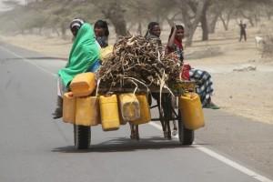 transport between Awassa and Lake Ziway