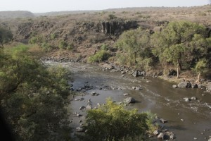 the Awash River Gorge
