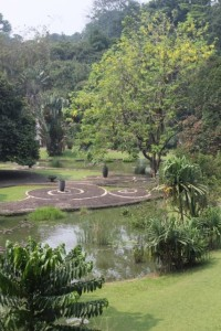 view of some of the ponds in the Botanical Gardens, and some of the original stone paths