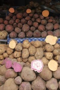 sweet potatos in the Bandungan market