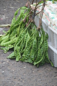and what they call stinking green beans, officially petai beans