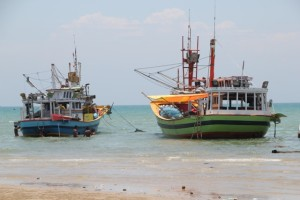 and some of the larger fishing boats