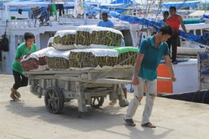 a cart full of packed dried fish
