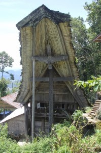 an old tongkonan, with original roof