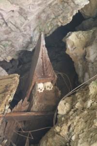 coffic with skulls, Tampangallo