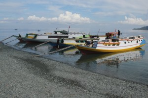 freighters for the Togian Islands, in Ampana