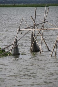 fishing nets in the lake