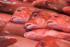 and raw fish