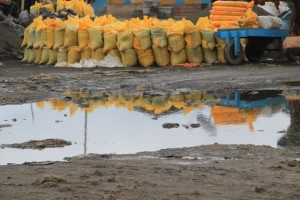yellow sacks with whatever, mirrored in the puddles