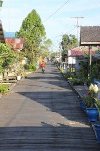 the only street, board walk, in Muara Paho