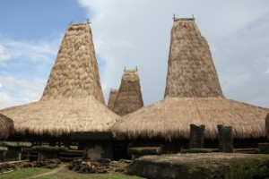 one of the Wainyapu village clans