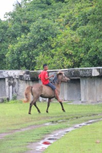 boy riding a horse testing the Wainyapu pasola field