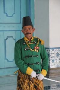 a palace guard