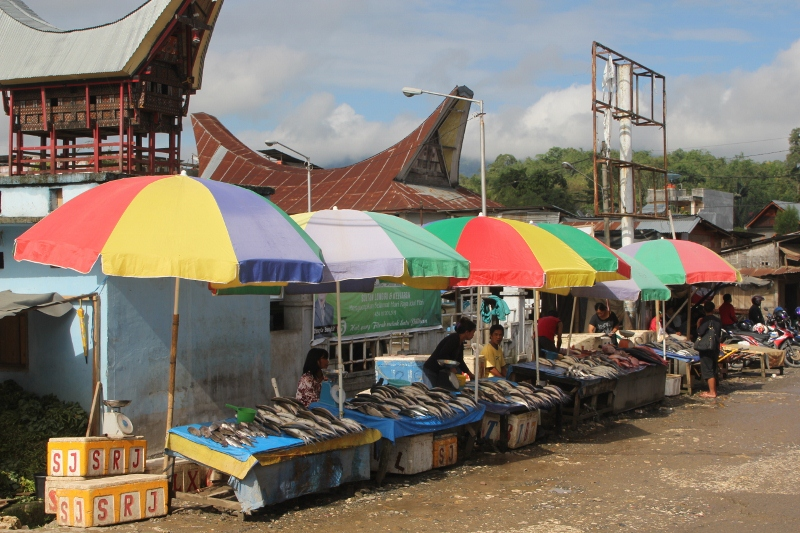 the fish market, more colourful stalls