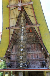 the front of one of the tongkonans