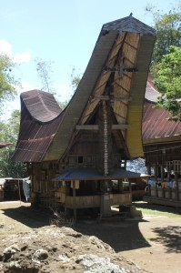 tongkonan, with its typical roof, decorated panels, and buffalo horns