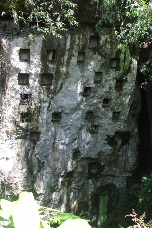 view of the whole rock face containing tombs