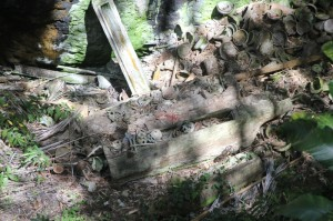 a crashed coffin, complete with bones and skulls spilled on the valley floor