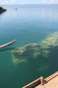 a submerged rock in Lake Poso, said to resemble the island of Sulawesi