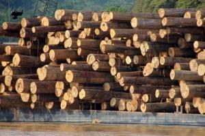 logging barge