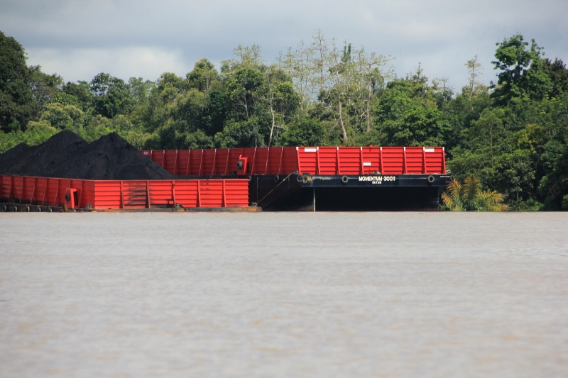 coal barges on the river near Melak