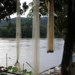 fishing nets drying along the river bank in Long Bagum